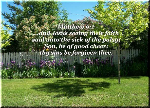 Matthew 9:2 Jesus Seeing Their Faith