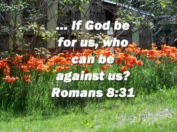 Romans 8:31 If God Be For Us