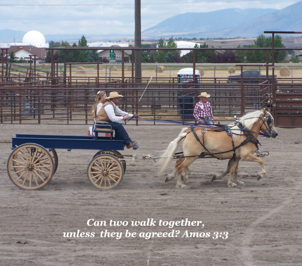 Amos 3:3 Believers Walking in Unity